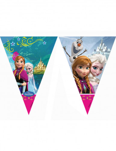 Festone bandierine Anna ed Elsa Frozen™