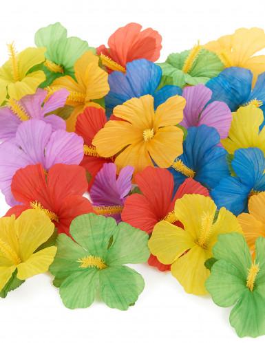 24 Fiori Hawaiani di stoffa colorata