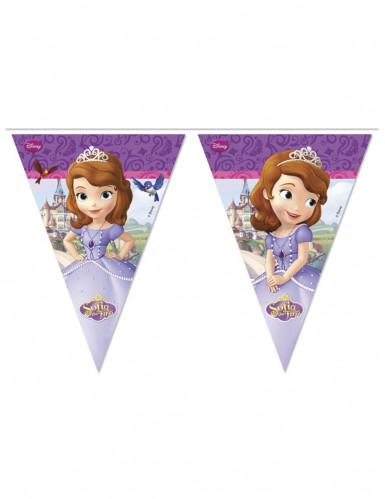 Ghirlanda di bandierine raffiguranti Sofia la Principessa™