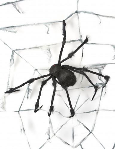 Decorazione a forma di ragnatela gigante con ragno per Halloween-1