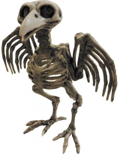 Riproduzione di uno scheletro di corvo in plastica