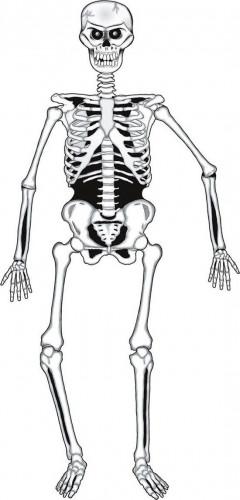 Scheletro in cartone per Halloween