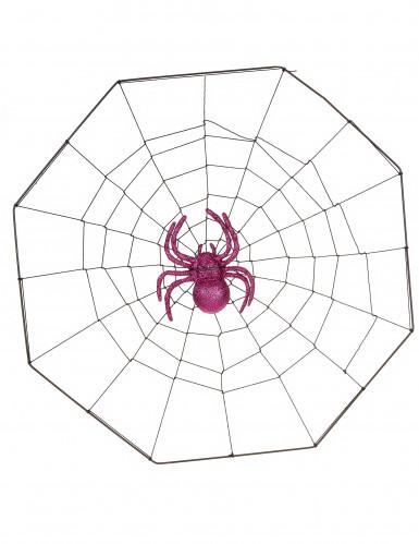 Tela di ragno con ventosa