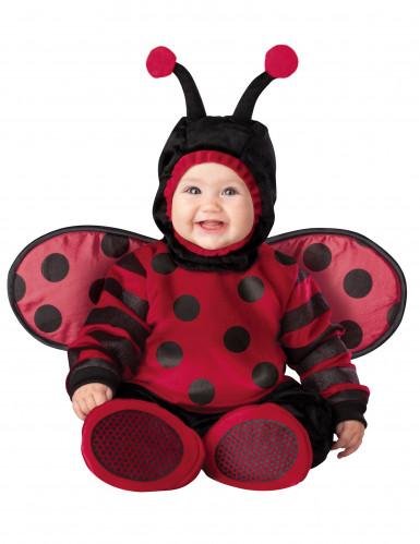 Costume per neonato Coccinella