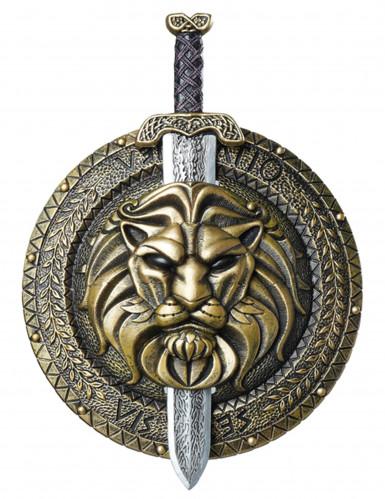Scudo e spada da antico guerriero romano
