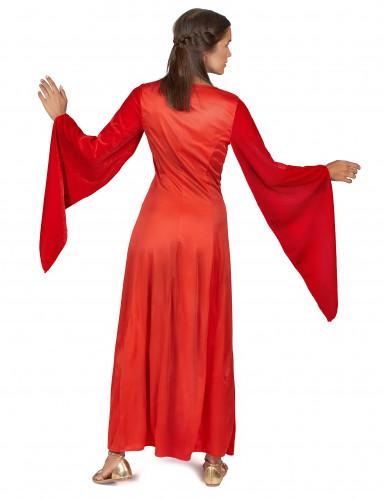 Costume medievale rosso da donna-2