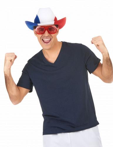 Cappello bandiera francese da cowboy-2