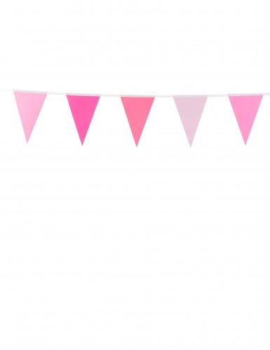 Ghirlanda di bandierine rosa 2 metri