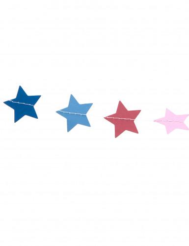 Ghirlanda di stelle multicolori lunga 3 metri-1