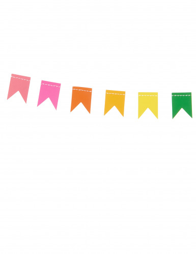Ghirlanda di bandierine multicolori in cartoncino-1
