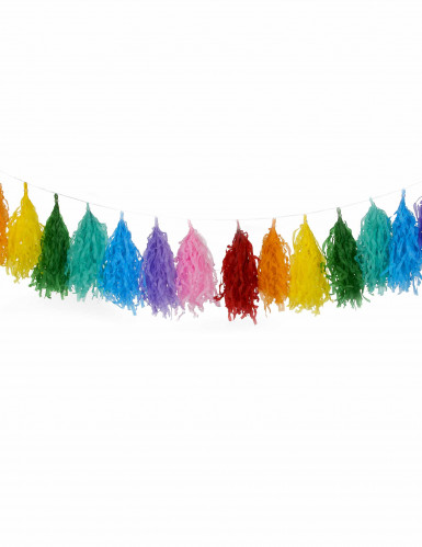 Ghirlanda con 16 pompon multicolore-1