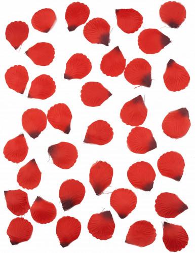 100 petali di tessuto rosso scuro-1