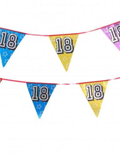 Ghirlanda di bandierine serigrafate con il numero 18