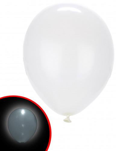 5 palloncini a LED bianchi Illooms™