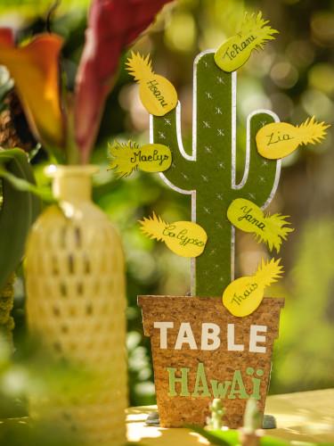 Cactus decorativo in metallo-2