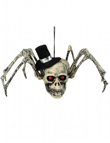 Decorazione ragno scheletro Halloween
