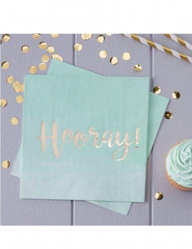 20 tovaglioli di carta color menta Hooray!-1