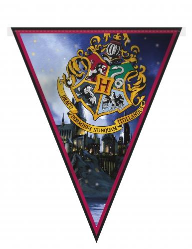 Kit 7 decorazioni Harry Potter™-2