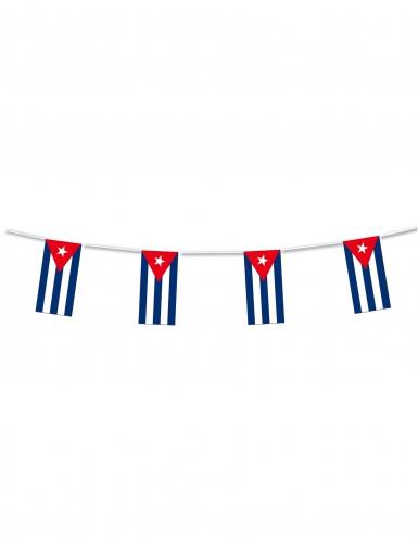 Ghirlanda in plastica di Cuba