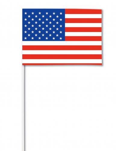 Bandiera di carta USA