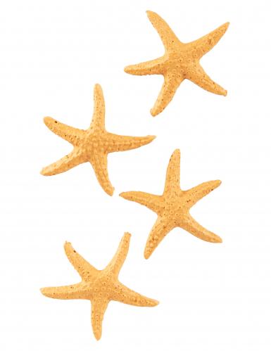4 stelle di mare in resina