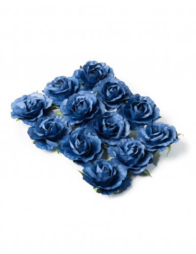 12 Rose Blu
