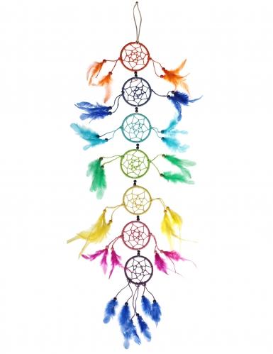 Acchiappa sogni multicolor con piume