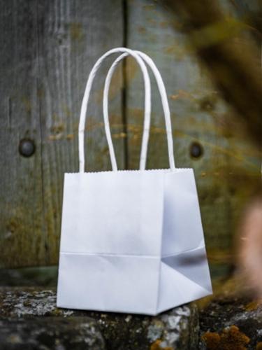6 mini sacchetti bianchi in cartone