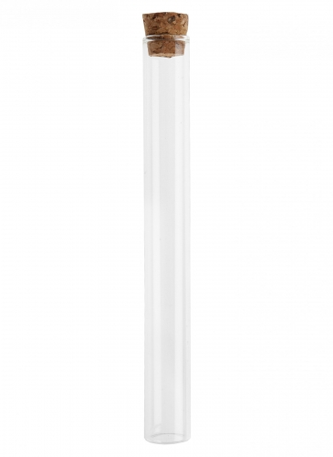 Tubo provetta in vetro 20 cm