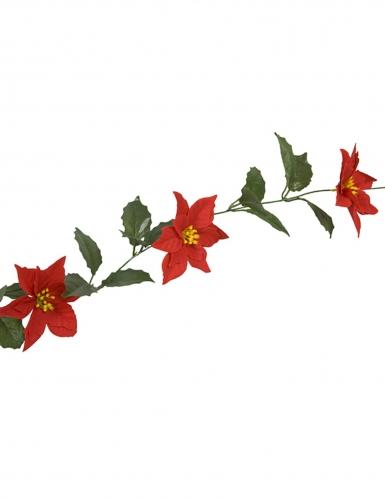 Ghirlanda con fiori stelle di Natale