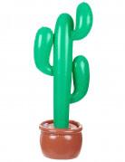 Cactus da gonfiare