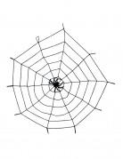 Ragnatela decorativa con ragno