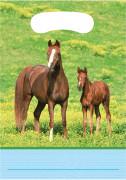 8 sacchetti da festa a tema Cavalli Selvaggi