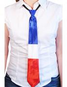 Cravatta con i colori della bandiera francese