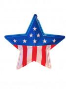 Decorazione murale a stella americana