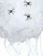 Ragnatela finta di colore bianco con ragni