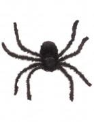 Ragno gigante modellabile
