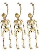 Decorazione da appendere con scheletri Halloween