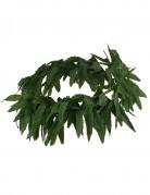 Corona con foglie tropicali verdi