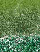 Trio di lucenti paillettes verdi