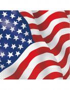 16 Tovaglioli carta con bandiera USA