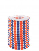 12 Lanterne di carta tricolori.