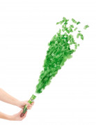 Tubo sparacoriandoli verde da 20 cm