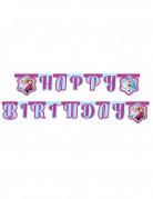 Ghirlanda Happy Birthday Frozen™2,10 m