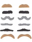 Confezione con 12 baffi per adulto