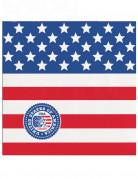 20 tovagliolini di carta USA