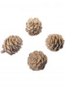 6 pigne con paillettes color rame 3 cm