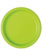 16 piatti di carta verde mela