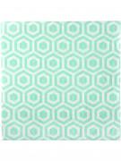 20 tovaglioli di carta a motivi color menta