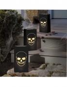 6 lanterne di carta con teschi Halloween